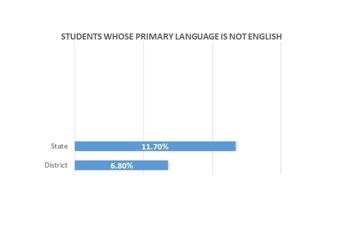 Students whose primary language is not English