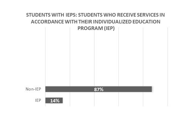 Chart of students with IEPs