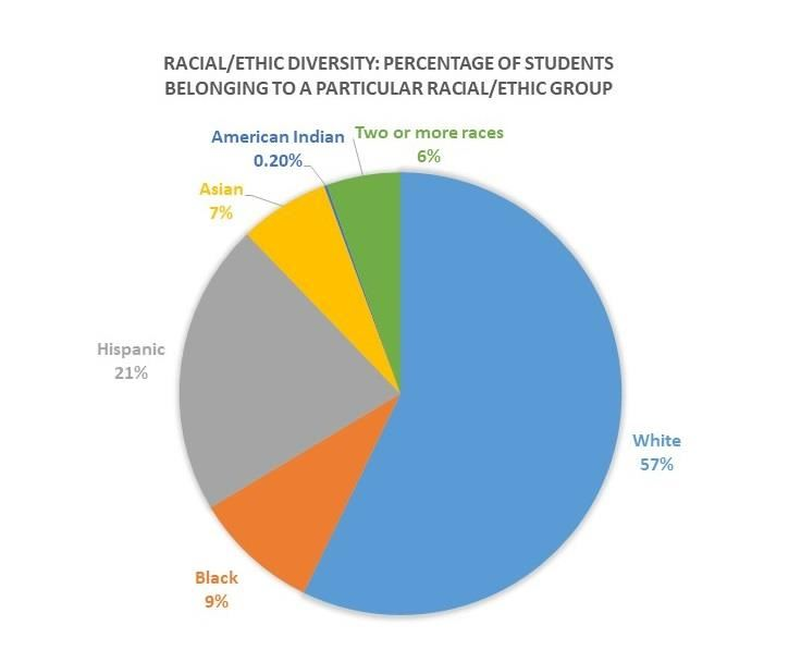 Racial Ethic Diversity Pie Chart of District students