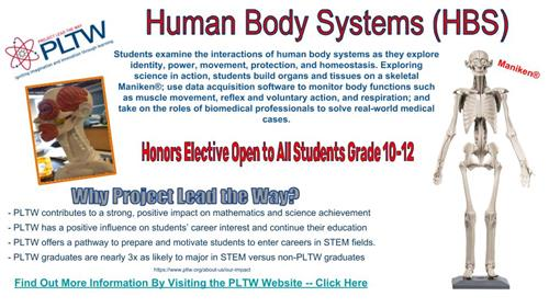Human Body Systems Info