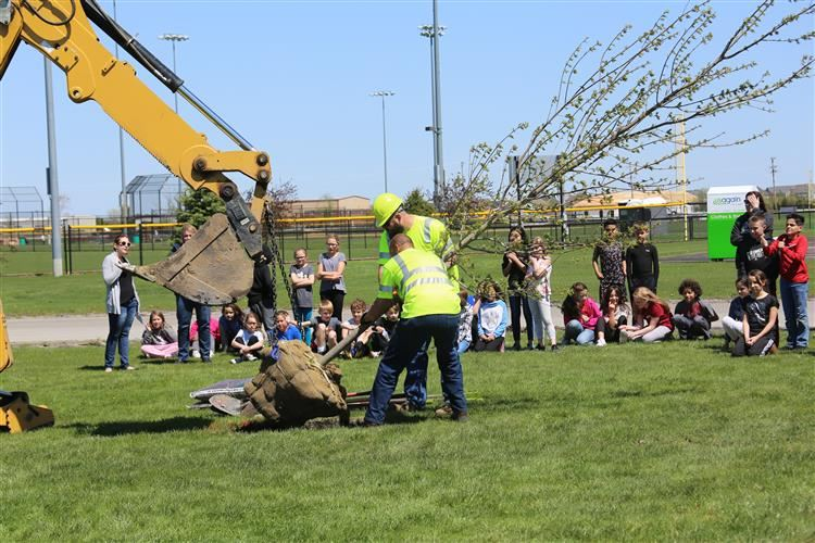 Park District employees plant tree