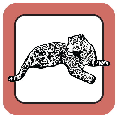 Fox Chase Jaguar
